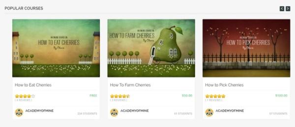 academy of mine create online courses