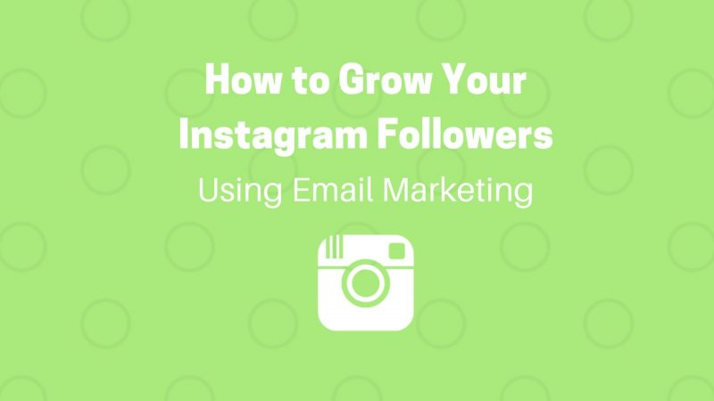 grow instagram followers with email marketing